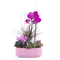 Centrepiece of plants in pink shades